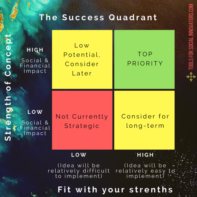 The Success Quadrant from Tools for Social Innovators